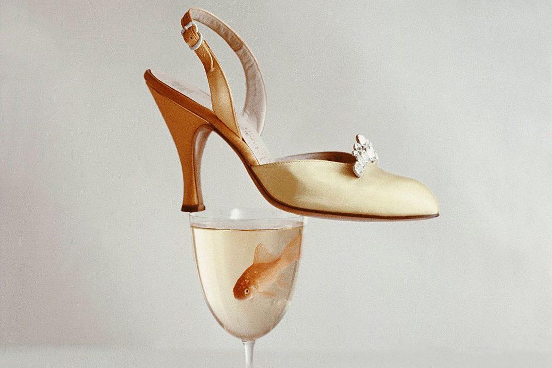 נעל עקב זהובה מאוזנת על כוס עם דג זהב