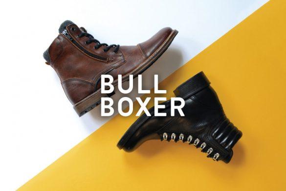 Bull-Boxer