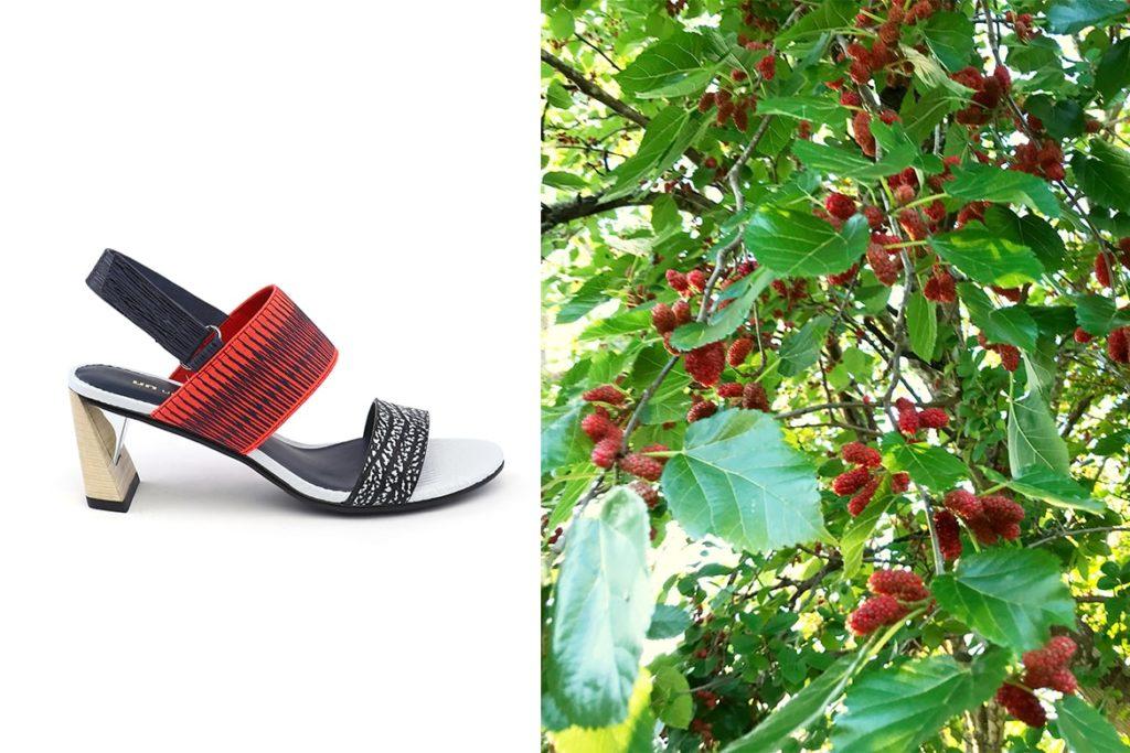 תות עץ וסנדלים של יונייטד ניוד
